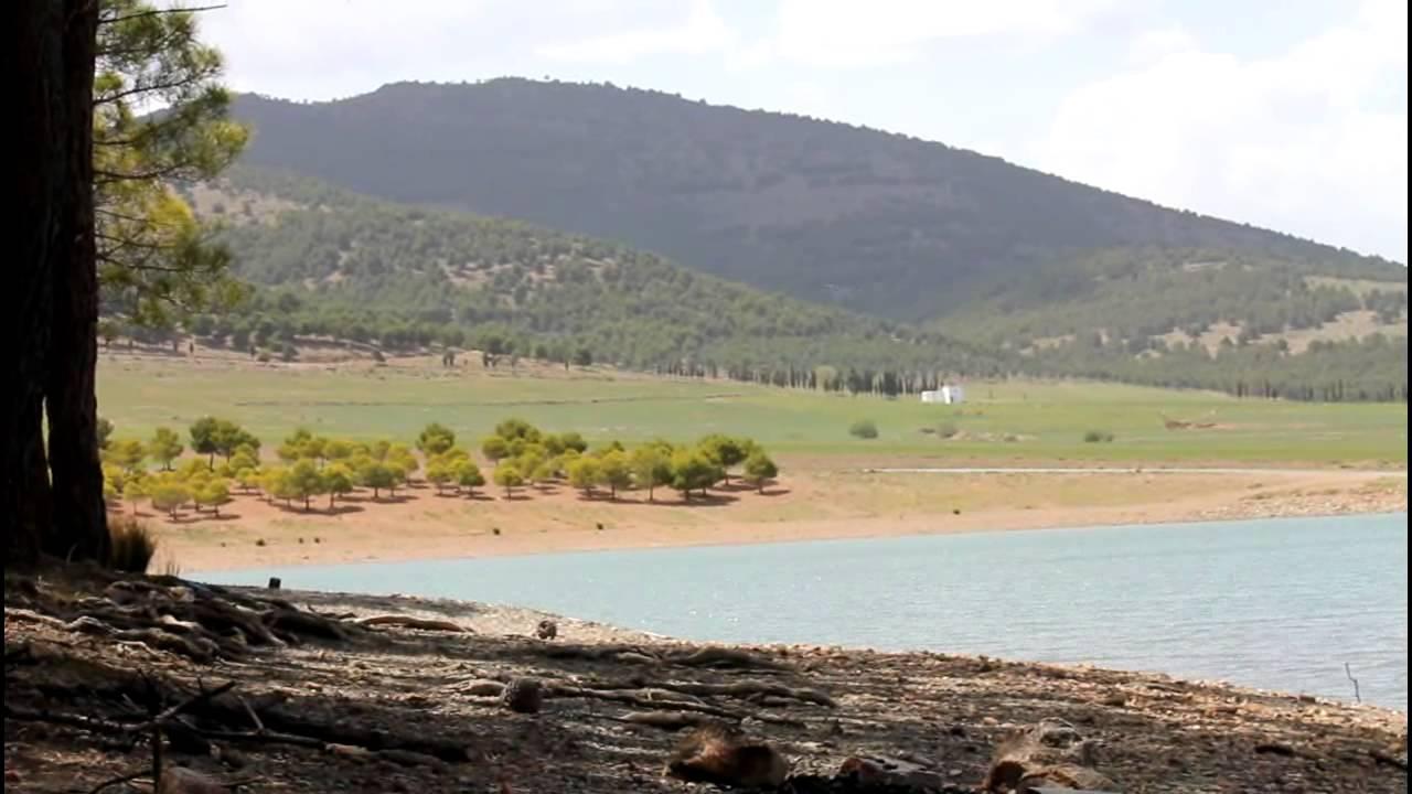 Afbeeldingsresultaat voor cogollos pantano andalucia