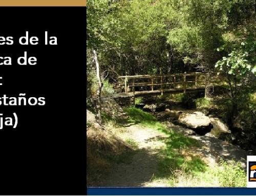Rincones de la Comarca de Guadix: Los Castaños (Huéneja)