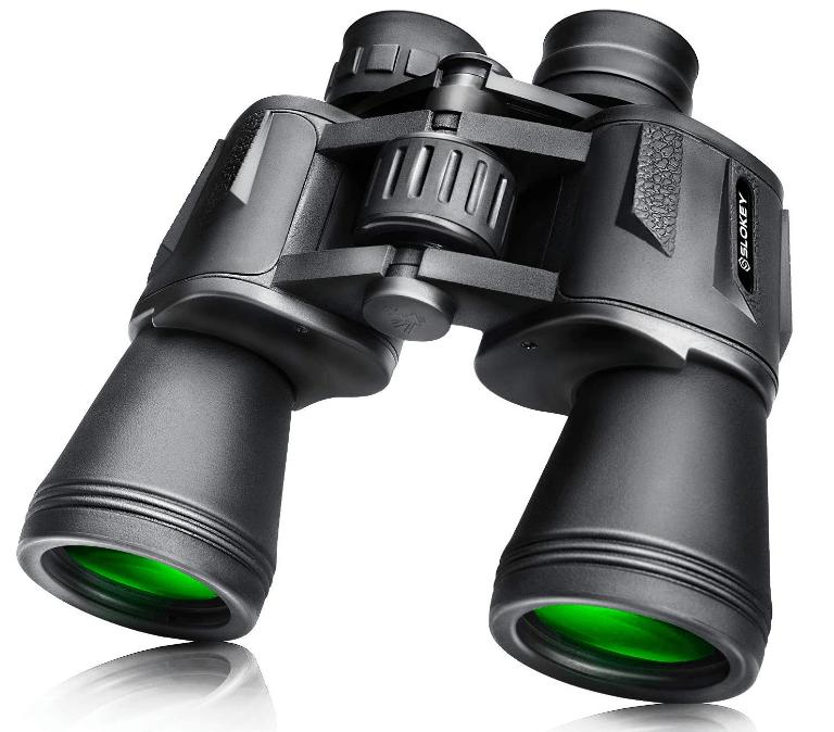 prismaticos para observacion de aves desde un hide